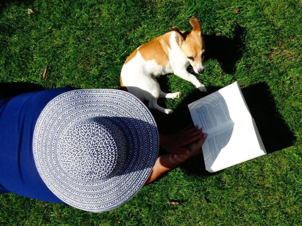 Perth Garden Maintenance Lawn Mowing Service Areas