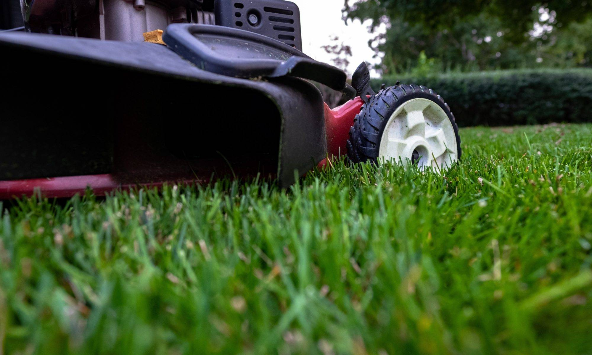 Perth Garden Maintenance Mowing, Lawn Care, Pruning, weeding, fertilising, mulching