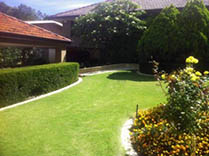 Hedging and Edging lawn