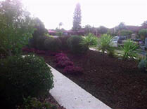 Mulched Garden Beds