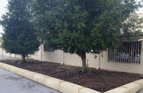 AFTER - Weeding at Bellevue Commercial property