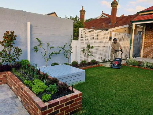 Lawn mowing, aeration and edging in Mount Lawley