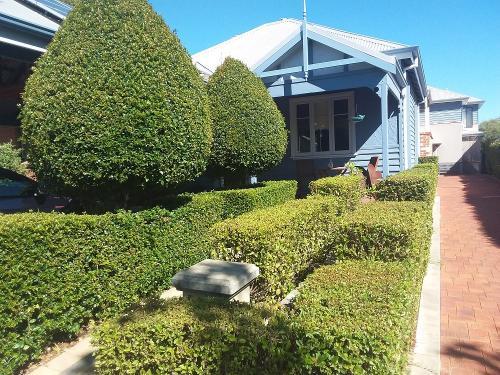 Hedging Topiary in Menora