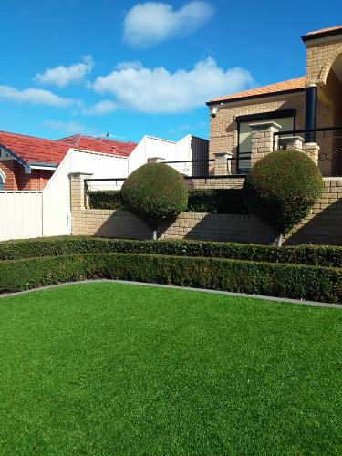 Hedging, Topiary and Lawn care in Trigg