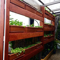 Vertical garden planters for herbs and vegetables in Mosman Park