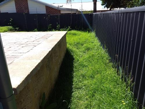 BEFORE - Lawn Mow, Edging and Whippersnipping in City Beach