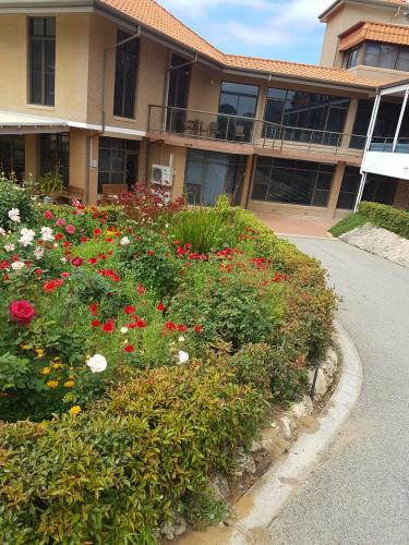 Aged care facility - garden maintenance