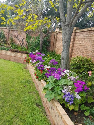 Aged care facility - Cottage garden restoration