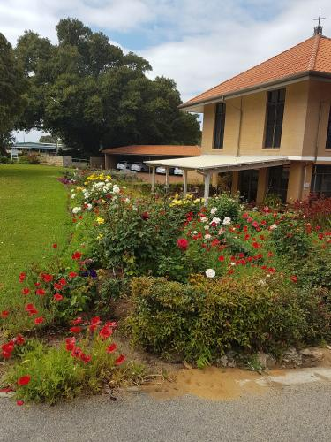Aged care facility - rose pruning