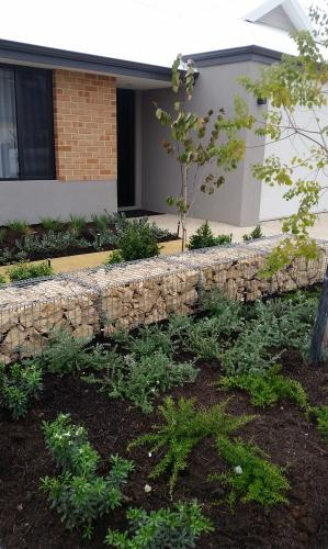 Mulching, plant selection, Gabion cage wall building in South Guildford