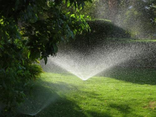 Fresh cut grass with sprinklers